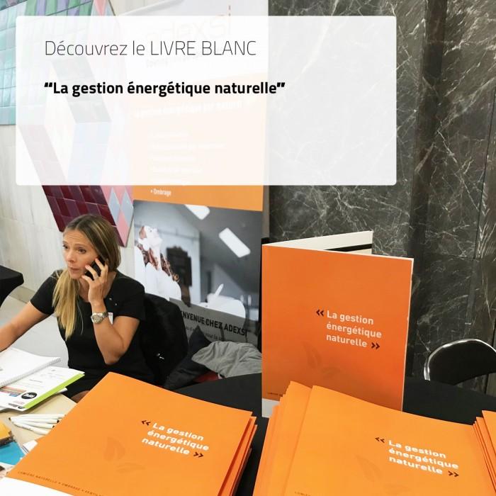 livre blanc pour le ministère de la transition écologique et solidaire : gestion énergétique naturelle