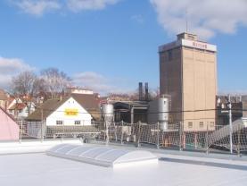 Remplacement de voûtes polyester par des voûtes polycarbonate sur la toiture de l'usine Meteor